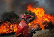 Filha menor de bombeira falecida