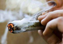 Fumar umas ganzas aumenta os mamilos dos homens