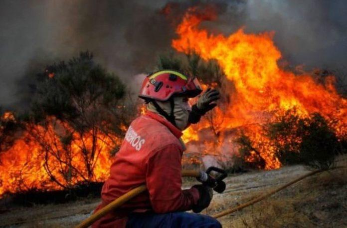 complemento para pensões de bombeiros feridos