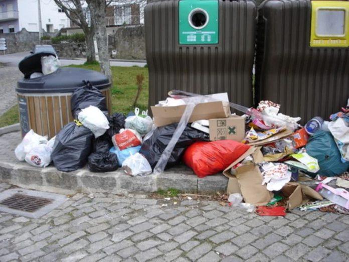 Dejectos de animais na rua e lixo fora dos contentores