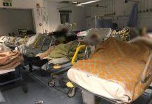 Enfermeiros partilham estado das urgências em Faro