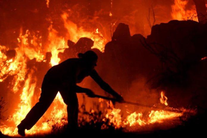 Quem ganha dinheiro quando arde Portugal