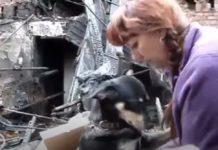 Cão abraça-se à dona