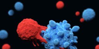 célula matar todos os tipos de cancro