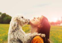 Ter um cachorro em casa ajuda a manter o teu coração saudável