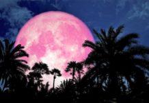 Lua de Morango