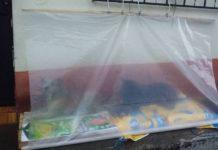 Família coloca barraca de plástico fora de casa