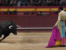 fim dos apoios públicos às touradas