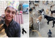 jovem que implorou ajuda para os seus 90 cães