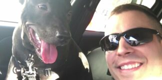 Policia encontra cachorro amarrado