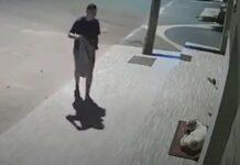 Homem filmado cobrir cachorro
