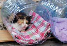 Moradores improvisam camas